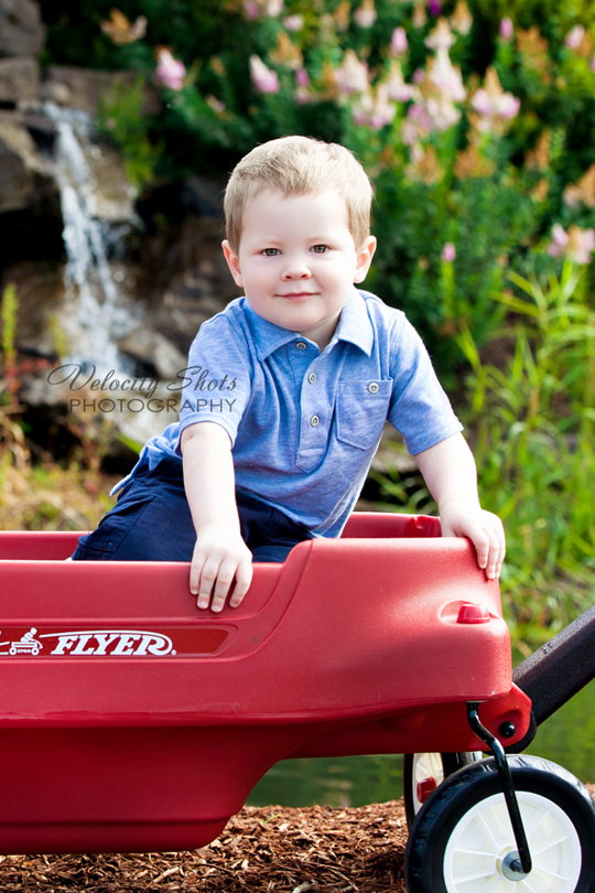 Toddler boy in wagon